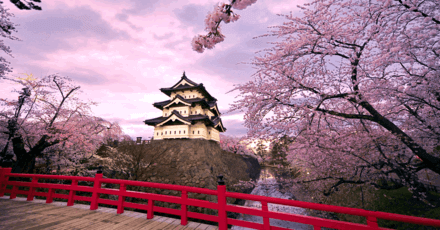 Which Japanese City is Most Suitable for You to Live in?